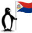 The Glacial penguin holding the flag of St. Maarten.
